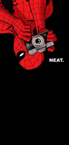 Spider man is Neat 237x500 Spider man is Neat