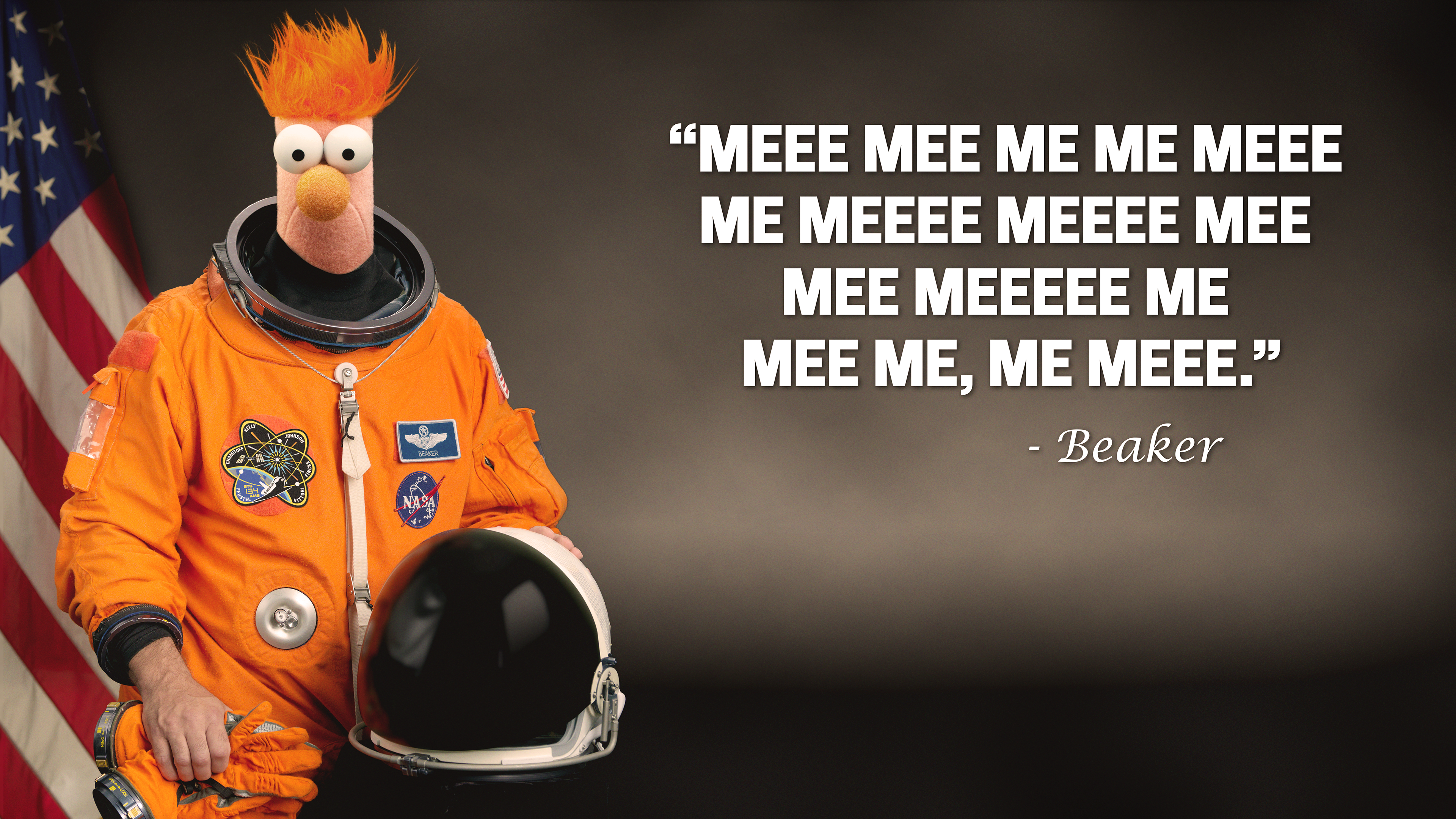 Beaker Went To Space